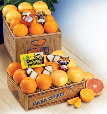 Sunshine Deluxe Assortment with Navel Oranges and Ruby Red Grapefruit