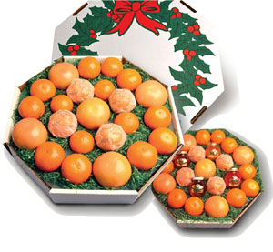 A wreath style box filled with Oranges, Tangerines and Grapefruit.