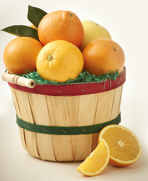 Half Peck Thank You Basket With Premium Oranges and Tangerines.