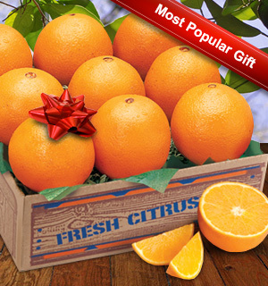 Florida Navel Oranges, Our Most Popular Gift