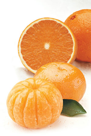 Combination pack of sweet Orlando Tangelos and popular Navel Oranges
