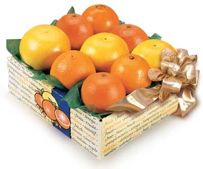 Florida Orange, Grapefruit and Tangerine Sampler