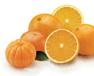 Valencia Oranges and Honey Tangerines in one sweet package.