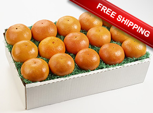 Tangerine Time Special available  with free shipping.