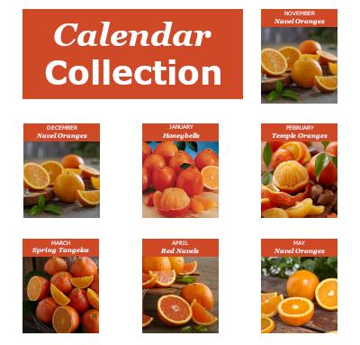 Monthly Fruit Club featuring Florida Oranges and Grapefruit.