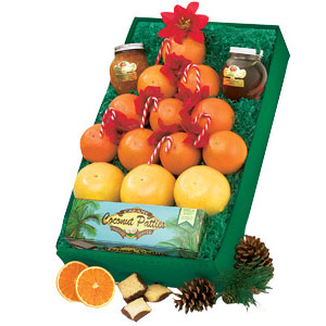 Oranges, tangerines, grapefruit and specialties arranged in the shape of a Christmas tree.