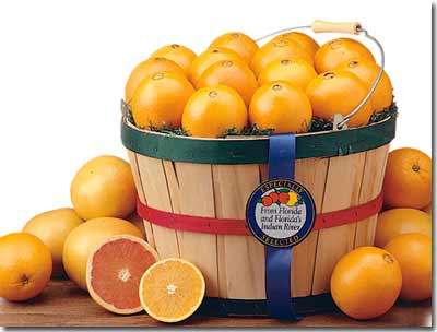 Florida Gift baskets with oranges, tangerines, and grapefruit make a fabulous gift.