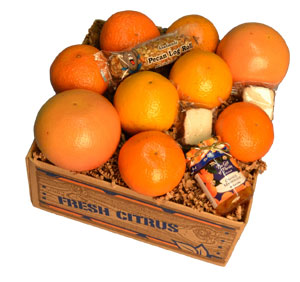 Combo pack of Florida Oranges, Tangerines, Tangelos and Grapefruit plus three special treats