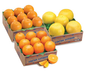 Navel Oranges, Ruby Red Grapefruit and Tangelos
