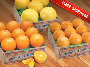 A flavorful collection of Navel Oranges, Orlando Tangelos and Ruby Red Grapefruit.