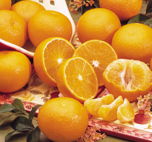 Ortaniques, a flavorful and sweet natural cross of Orange and Tangerines