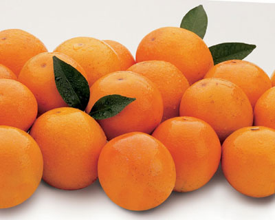 Mighty Page Oranges, small but juicy. Flavorful, too!