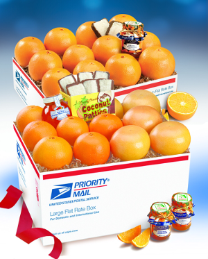 Premium Florida Oranges and Grapefruit in a Jumbo equiv pack shipped to US including Alaska.