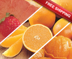 Jumbo tray pack with Navels, Ruby Red Grapefruit and Honeybells.