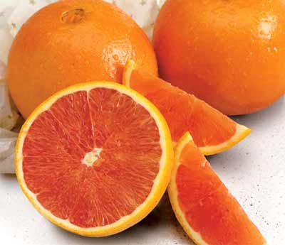 Florida Scarlet Navel Oranges
