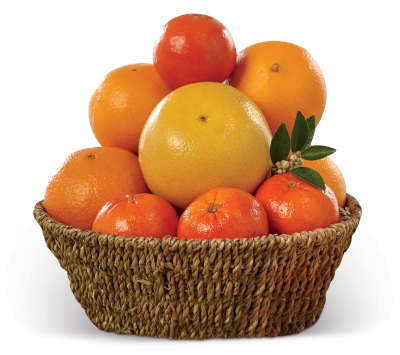 Navels, Tangerines and a Ruby Red Grapefruit in woven seagrass basket.