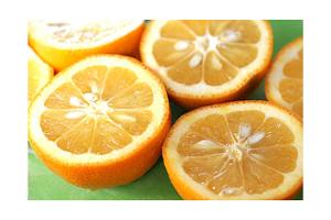 Seville Oranges, also called Sour Oranges or Bitter Oranges