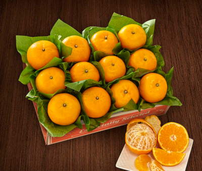 Sol Zest Mandarins, super juicy and exquisitely flavorful.