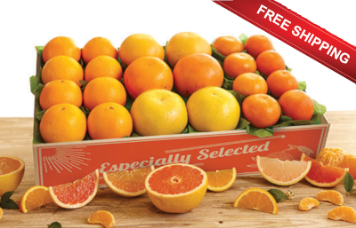 Three kinds of Grapefruit plus Oranges and Tangerines make up this Fabulous Five plus free shipping.