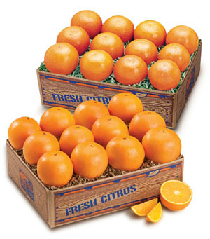 Florida Tangerines and seedless Navel Oranges
