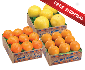 Trio of Temple Oranges, Honey Tangerines and Ruby Red Grapefruit