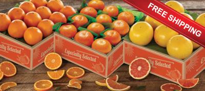 Three Tray Bonanza of Florida Oranges, Tangerines and Red Grapefruit ships free.