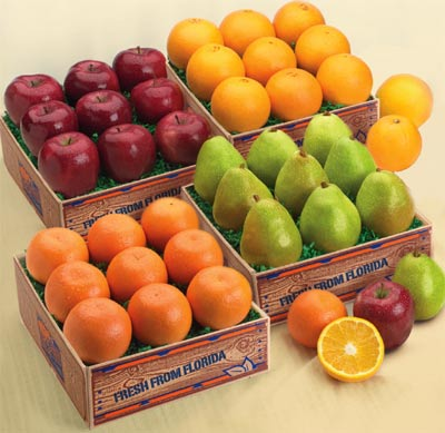 The Ultimate Medley of Oranges, Tangerines, Apples and Pears