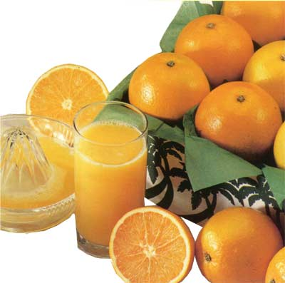 Seedless Florida Valencia Oranges