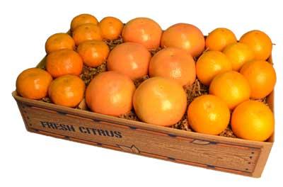 Seedless Valencia Oranges, zipper-skin Honey Tangerines and sweet Ruby Red Grapefruit.